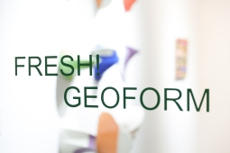 20-Fresh-Geoforms Opening 2017